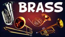 Brass Sounds Samples Horns Sounds Kit Hip Hop MPC Logic Reason Mv-8000 Boss wav