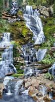 Waterfalls Scenic Panel 23'' x 44'' Cotton Fabric by Timeless Treasures