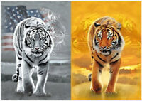 TIGER FACE IMPRINT 3D PICTURE 300mm X 400mm