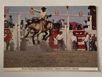Calgary Alberta Canada Bronc Riding Calgary Stampede Magestic Postcard Vintage