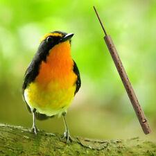Pi Thai Bamboo Musical Bird Whistle Sound Flute Sliding Handmade Souvenirs Easy