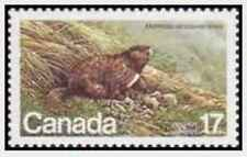 Timbre Animaux Rongeurs Marmotte Canada 762 ** (32063P)