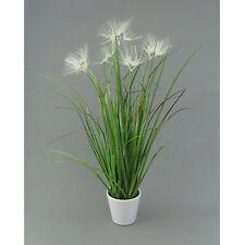 Kunstpflanze FEDERGRAS 55 cm. Grasbusch 5 Blüten. Kunststofftopf weiß. 105112-00