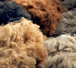 Alpaca fleece. 1 pound RAW WOOL Grab Bag. ALL Natural. Hypoallergenic. Organic