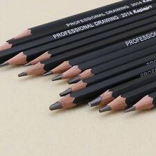 Set Of 14 Pro Sketch Art Drawing Pencil Sketching Oil Base Artist Sketch Soft