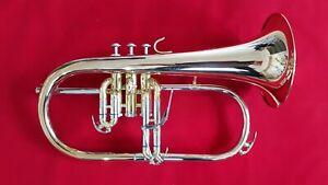 Flügelhorn, Pumpventile - Goldmessing Schallbecher - NEU