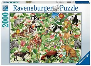 Ravensburger - Jungle 2000pc - Jigsaw Puzzle