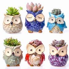 "6pcs Claywa Ceramic Owl Succulent Pots Cute Animal Plant Planters 2.75"" to 3.35"""