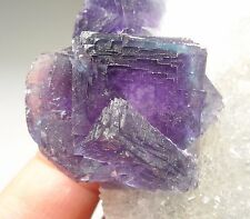 Natural striated surface Blue Rim Purple core cubic fluorite Anhui China B1575