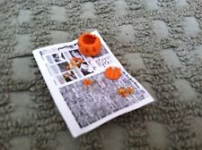Vintage Hand Crafted Minature/Dollhouse Pumpkin Carving on a Newpaper