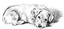 Canine Terrier Dog Laying Down Unmounted Clear Stamp Approx 80x39mm