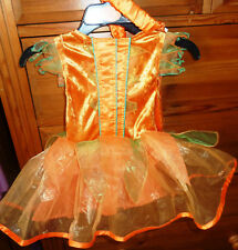 BNWT Child's fairy fancy dress, dress + headband Age 2/3