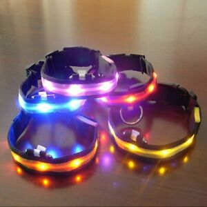 LED Pet Dog Collar Flashing Glowing Collars Necklace Dog Leash Dogs Pet Products