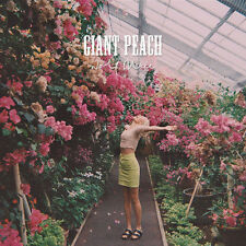 """WOLF ALICE, GIANT PEACH, STRICTLY LIMITED 7"""" UK 2015 (SEALED)"""