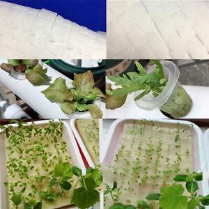 100p Cultivation Seedlings Vegetables Plant Nursery Sponges Soilless Hydropon.bl
