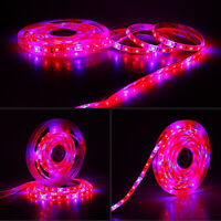 Grow lights red:Blue DC 12V led strip 5050 SMD For Plant Growing 1M 2M 3M 4M 5M