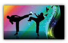 Karate Fighters Car Bumper Sticker Decal 5'' x 3''