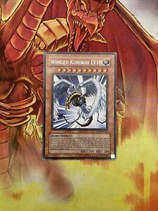 DP1-EN006 Yugioh Silver Rare. Winged Kuriboh LV10 NM