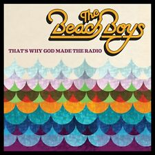 That's Why God Made The Radio  The Beach Boys Vinyl Record
