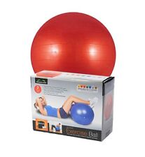 Exercise Fitness Swiss Gym Yoga Core Aerobic Ball 65CM Abdominal leg Workout RED