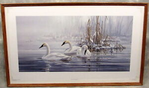 RETURN TO HORICAN TRUMPETER SWANS SCOTT ZOELLICK s/n ltd ed print c1998 framed