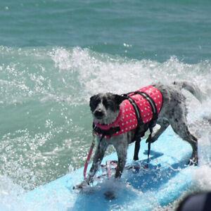 Oxford Mesh Pet Large Dog Life Jacket Summer Swimwear Puppy Life Vest Breathable