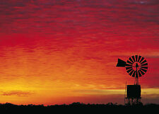 A1 size canvas outback windmill  Australia landscape art print  photo Sunset
