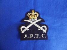 ARMY PHYSICAL TRAINING CORPS ( APTC ) BLAZER BADGE