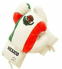 Kids 10 Oz MEXICO Faux Leather Boxing Gloves SPARRING YOUTH PRACTICE TRAINING