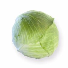 Vegetable - White Cabbage - Toughma RZ F1 - 2500 Seeds - Bulk Pack