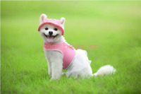 Small Pet Hats Dog Princess Hat Sports Windproof Travel Sun Hats for Puppy Dogs