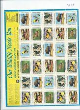 Cartel de leucocitos. - Cenicienta/- WS05-Estados Unidos-hoja-vida silvestre necesita -1978