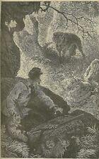 DE CHERVILLE L'HISTOIRE NATURELLE EN ACTION illustrations TISSET BELLECOURT