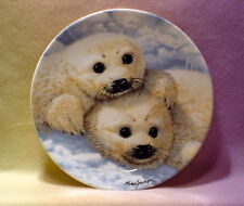 BABY SEALS  *FINE CHINA *PLATE 8 IN* BY  MIKE  JACKSON * ROYAL GRAFTON
