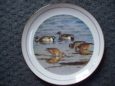 "Al Barnes Duck Stamp Plate 9"" PINTAIL DUCKS 1993 Ducks Unlimited Limited Edition"
