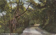 V04.Vintage Postcard. Kewstoke Road. Weston Super Mare. Somerset