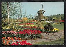 C1980s View of the tulips and windmill, Franz Roozen, Vogelenzang, Holland