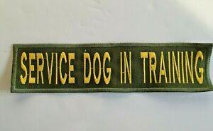 SERVICE DOG IN TRAINING  BADGE