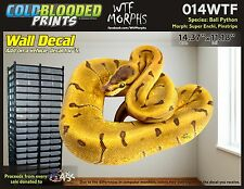 Removeable Wall Decal Snake Ball Python Cold Blooded Prints Sticker 014WTF