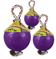 Jolly Ball Romp-n-Roll 10 cm Violett - Hunde Spielzeug Ball