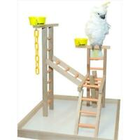 Caitec PL 24 24 in. Playland 2 Cups and Chains