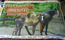 Castleton Ranch Horse  40x60 Fleece Blanket, Throw, Wall hanging, GIFT!
