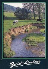 Alte Postkarte - Zuid-Limburg