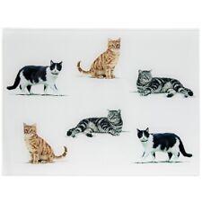 Leonardo - GLASS CHOPPING BOARD WORKTOP PROTECTOR - Macneil Cat Cats