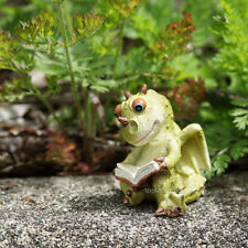 Miniature Fairy Garden DRAGON READING (NEW)