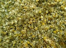 900 Gram Chamomile Flowers Dried Whole Organic Herbal Tea From Egypt زهرة بابونج