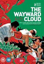 The Wayward Cloud [2004] [DVD]