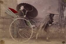 Japon Japan Japanese Antique Photograph Vintage Albumen 1880's