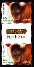 2012 Australian Zoo's Muh 50c Gutter Pair - Sumatran Orangutan
