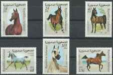 Timbres Chevaux Sahara occidental ** lot 27058